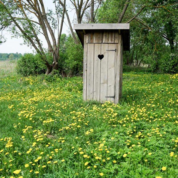 Toilettes-saches